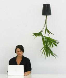 sky planter design